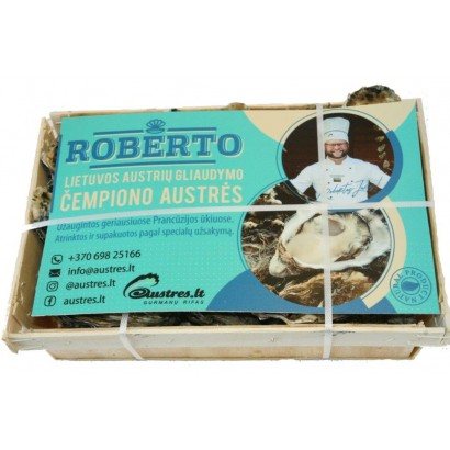 ROBERTO Speciales Nr2; 24vnt